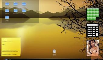 mandriva 2009 beta 1 - KDE 4.1 Finale