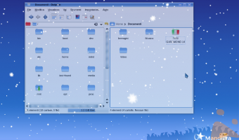 Nevica a Linuxlandia.